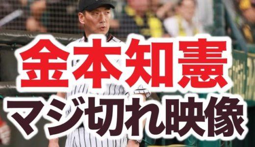 怖すぎブチ切れ動画アリ!阪神金本が男性ファンと揉み合いマジ喧嘩!韓国系を野次る差別用語浴びる?