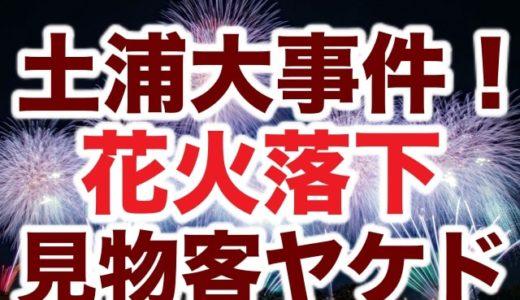 【恐怖映像】土浦花火大会で見物客が花火落下事故で火傷!パニック動画がヤバイ