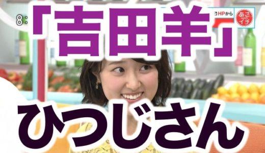 【動画】吉田羊キレる?近江友里恵が「ひつじさん」と誤読!空気が怖すぎる【NHKあさイチ】